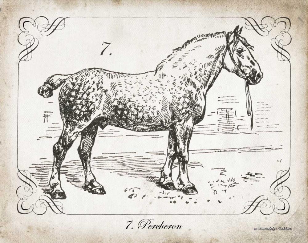 Farm Horse I Babbitt, Gwendolyn 143248