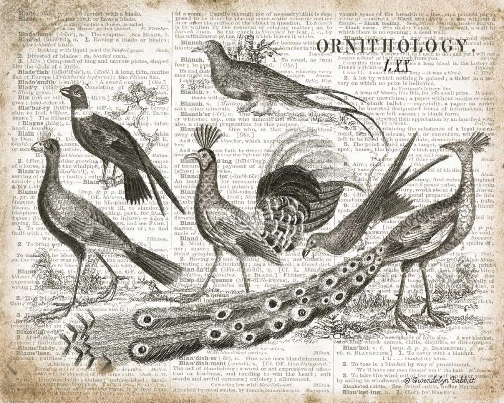 Birds II Babbitt, Gwendolyn 143269