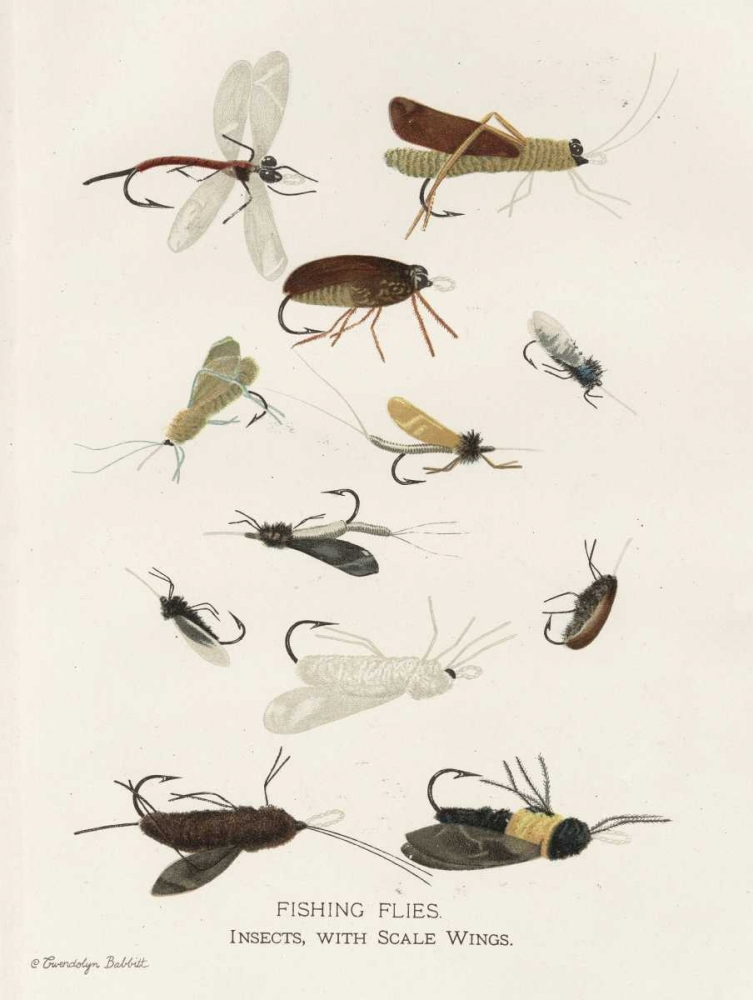 Fishing Flies I Babbitt, Gwendolyn 143493