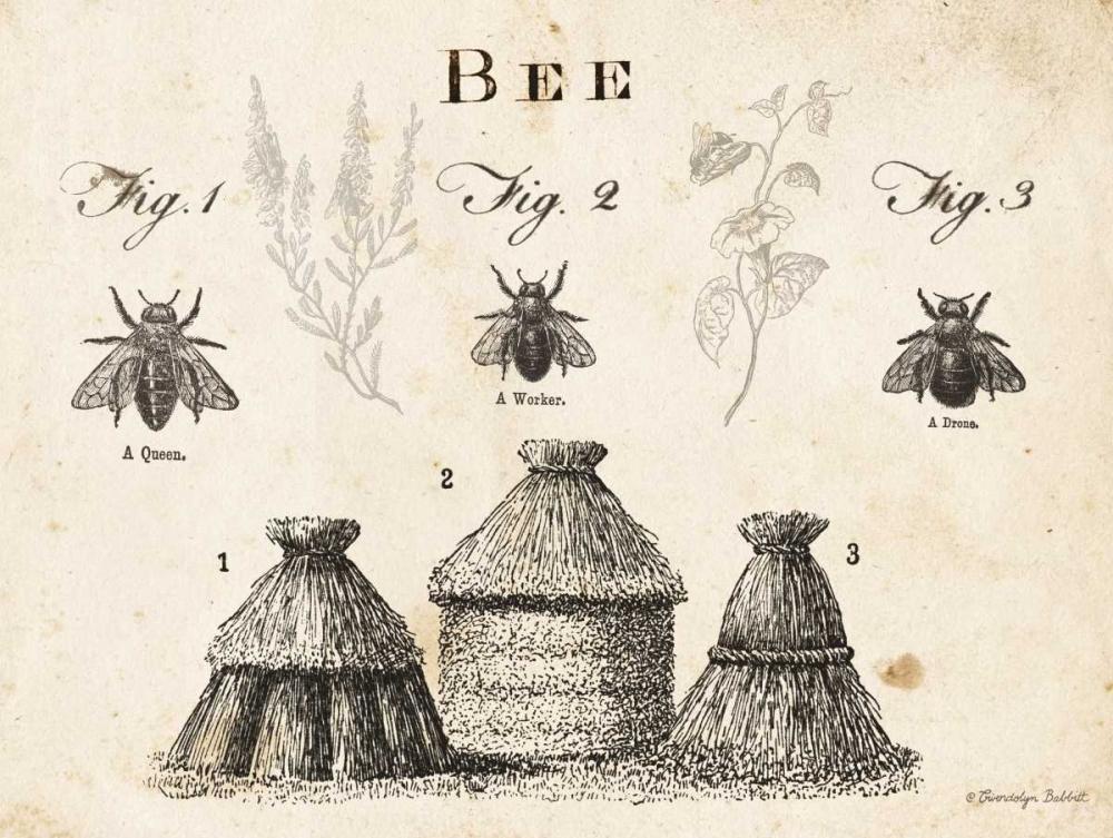 Bee Chart I Babbitt, Gwendolyn 164202