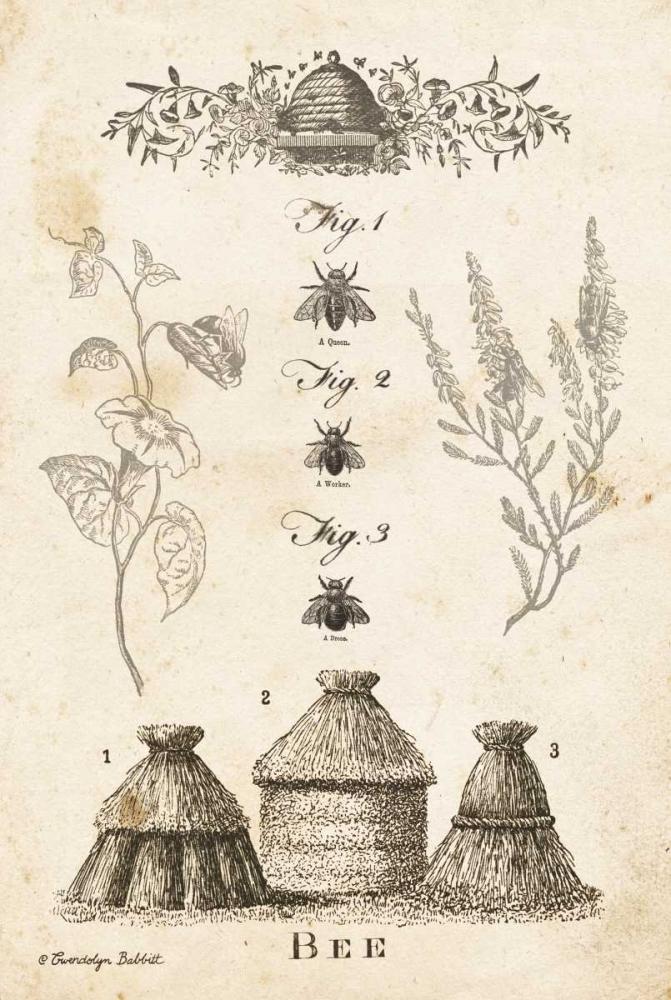 Bee Chart II Babbitt, Gwendolyn 164201
