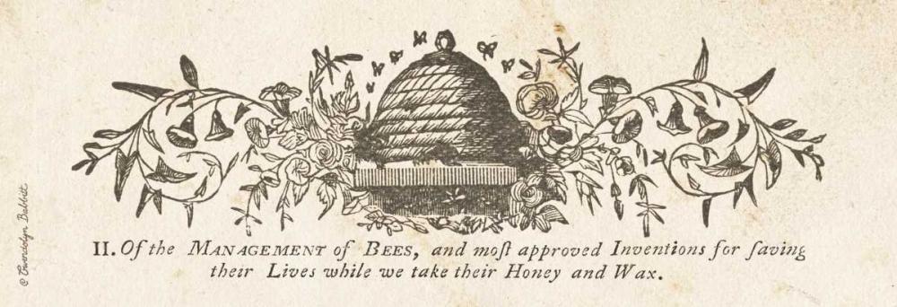 Bee Hive Panel Babbitt, Gwendolyn 164200
