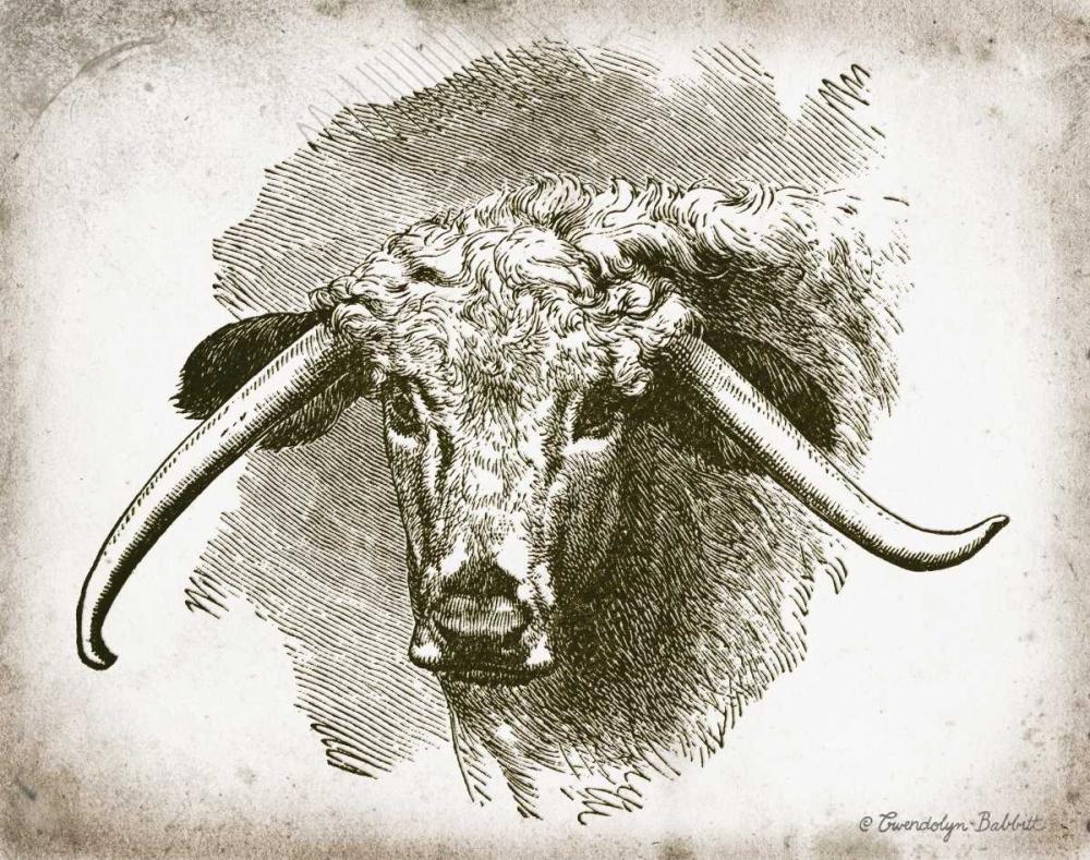 Cow Face II Babbitt, Gwendolyn 164190