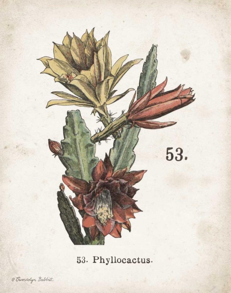 Cacti I Babbitt, Gwendolyn 164164