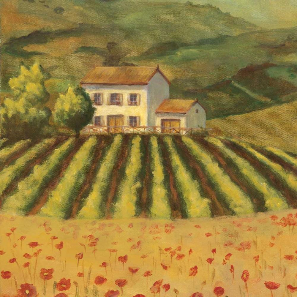 Tuscan Landscape I Belamar, Ella 13840