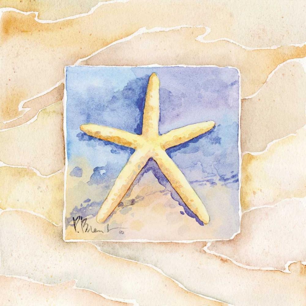 Starfish Brent, Paul 4192