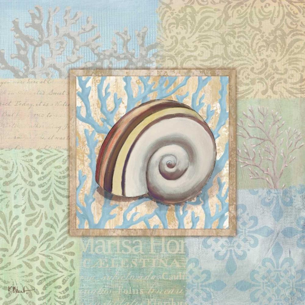 Oceanic Shell Collage IV Brent, Paul 4383