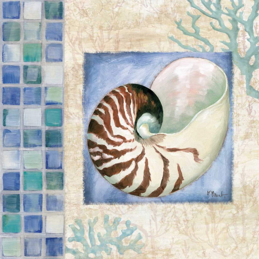 Mosaic Shell Collage V Brent, Paul 143625