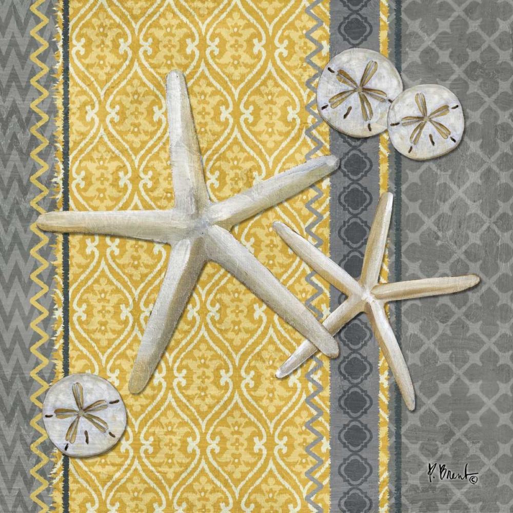 Santa Cruz Shells IV Brent, Paul 143684
