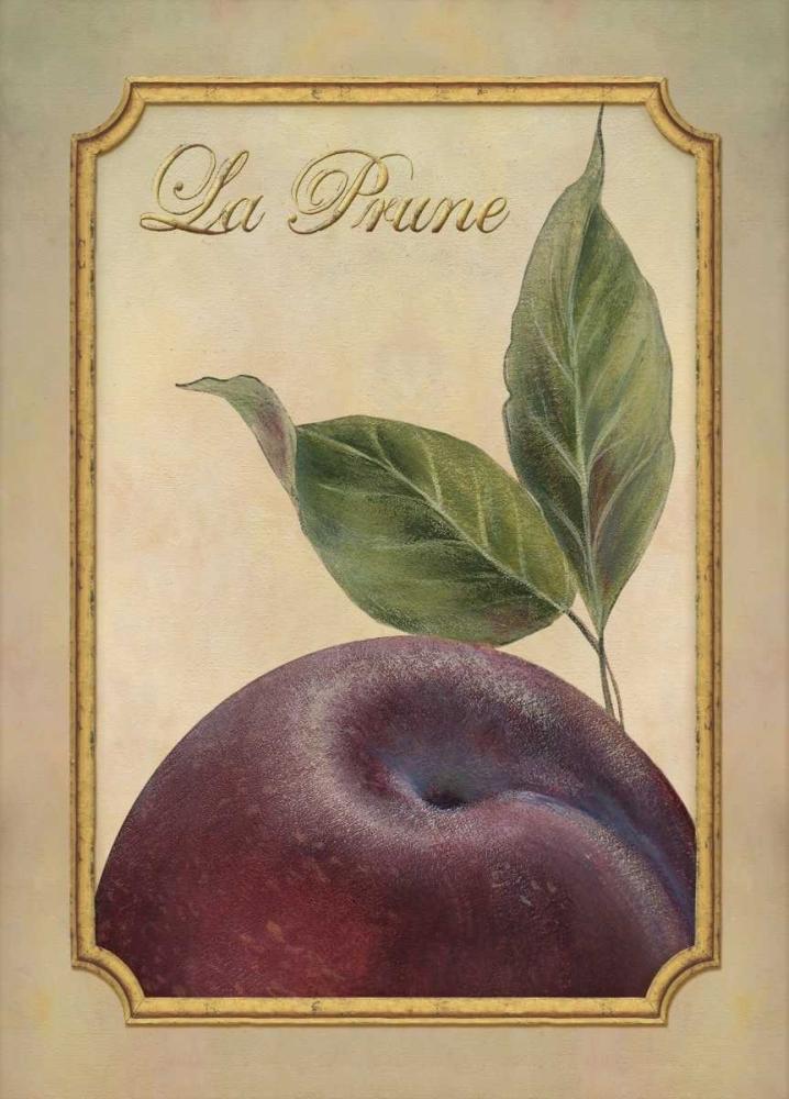 La Prune Corbin, Delphine 6804