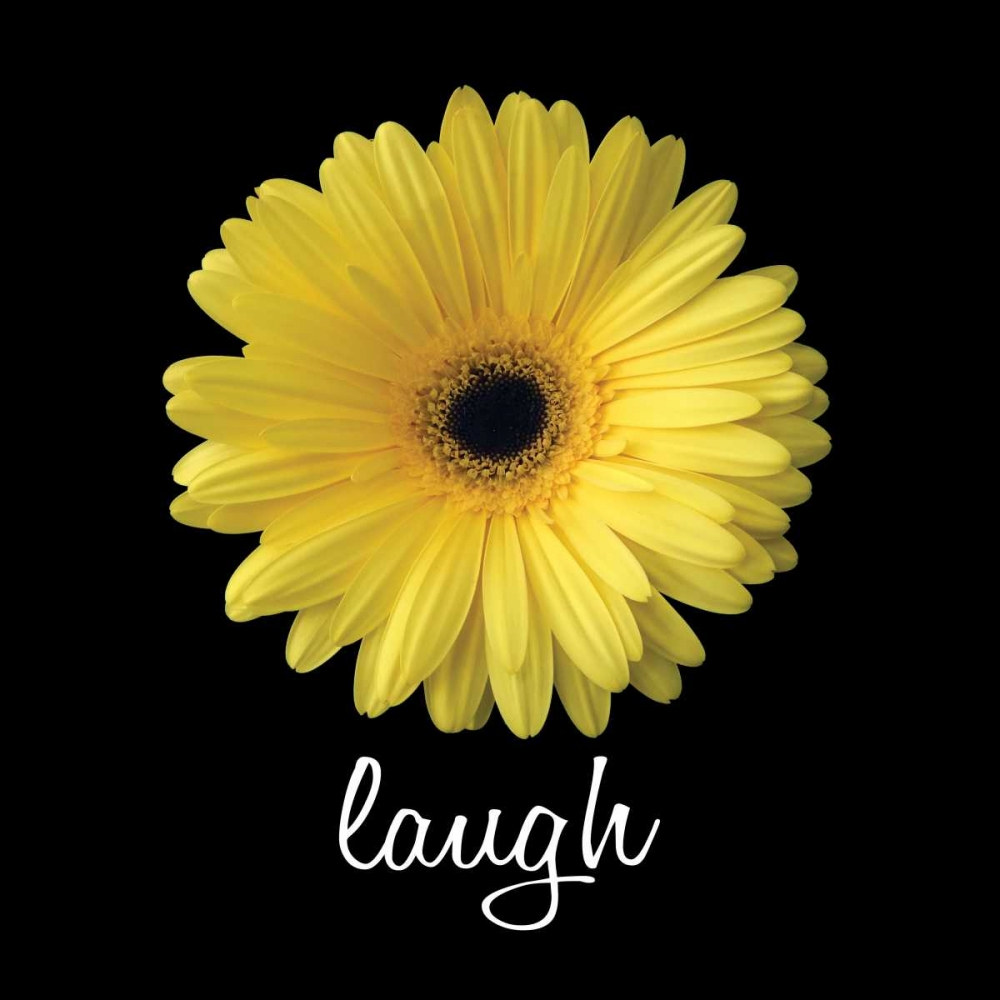 Laugh Daisy Christensen, Jim 144224