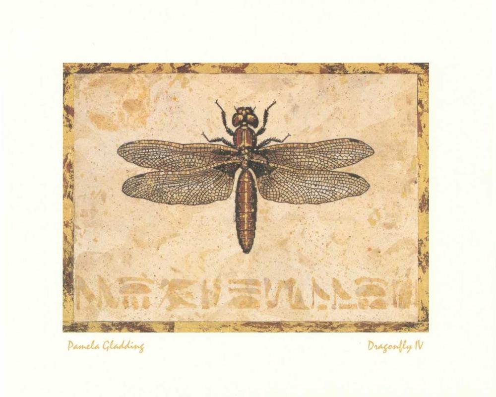 Dragonfly IV Gladding, Pamela 6807
