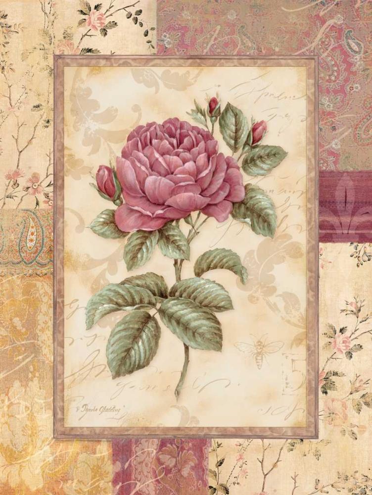 Provence Rose I Gladding, Pamela 4851