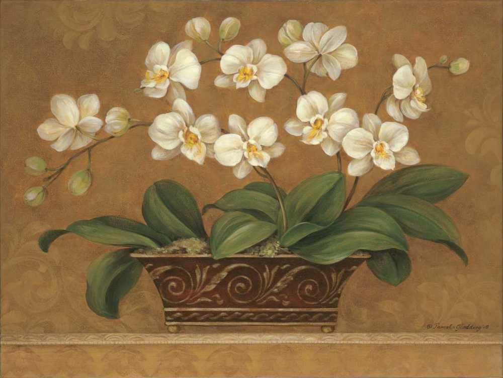 Orchid Tapestry Gladding, Pamela 4873