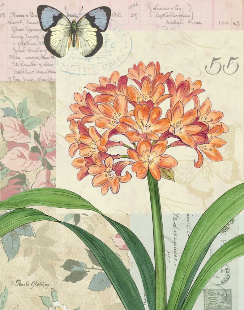 Clivia Floral Collage Gladding, Pamela 4891