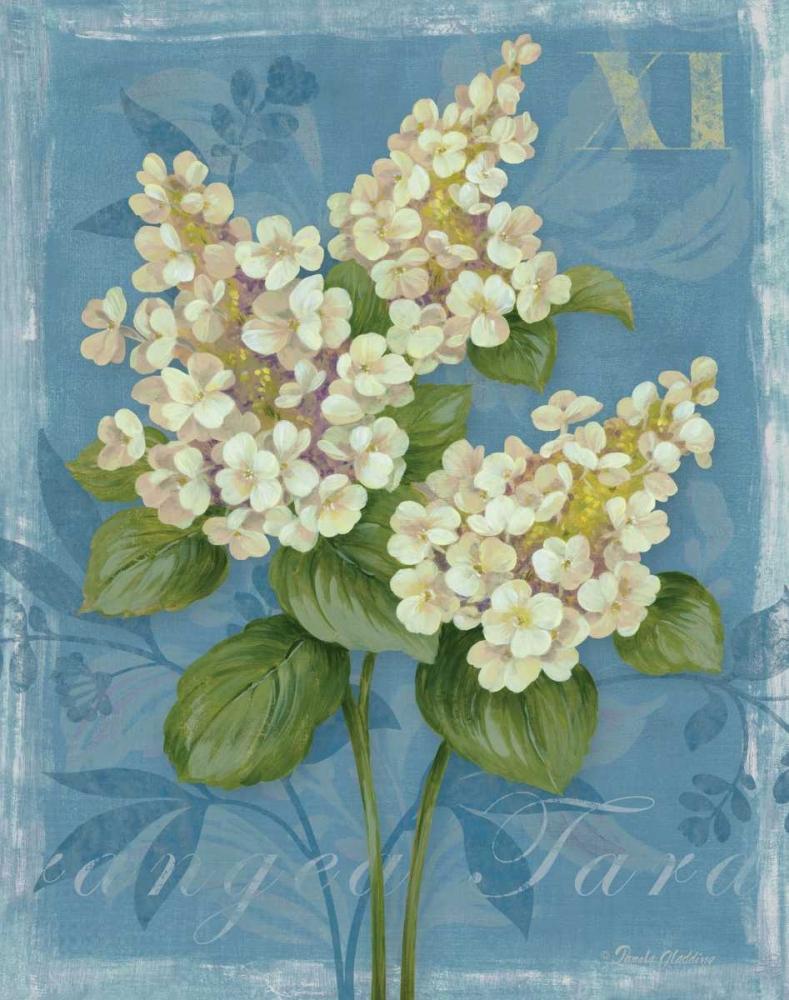 Tardiva Hydrangea Gladding, Pamela 4904