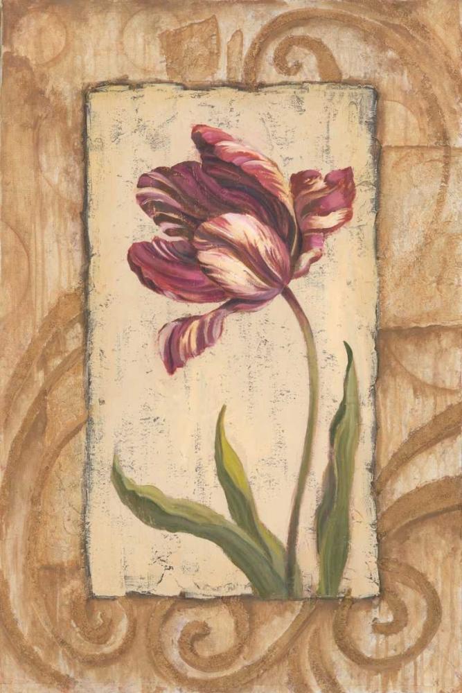 Classic Tulip II Jeffrey, Jillian 5542