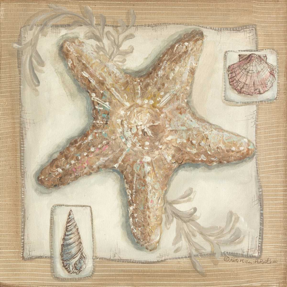 Sandy Starfish McRostie, Kate 144857