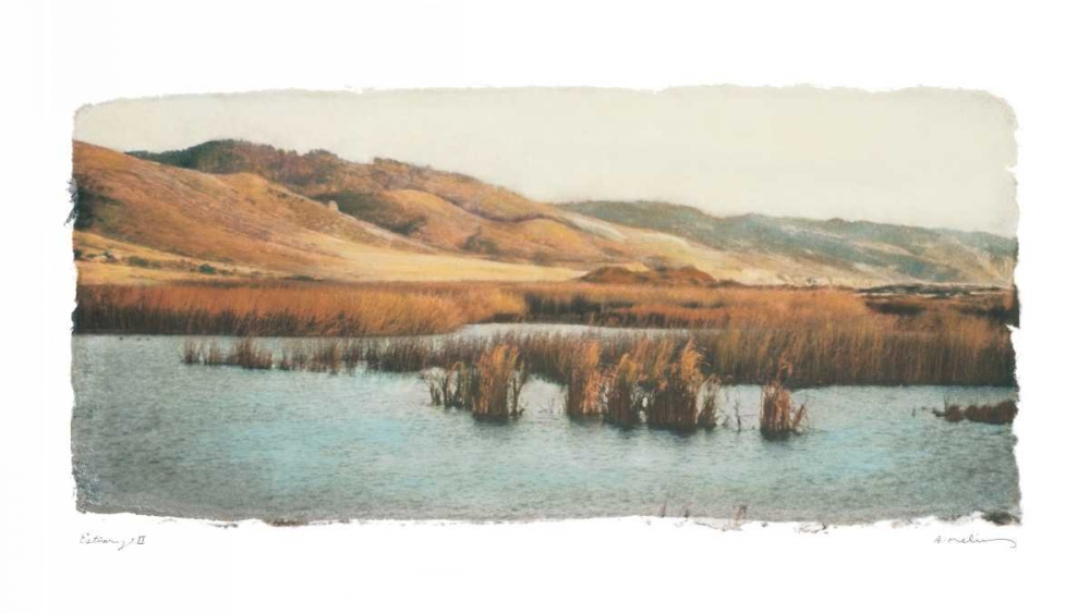Estuary II Melious, Amy 5434