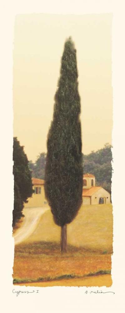 Cypress I Melious, Amy 5469
