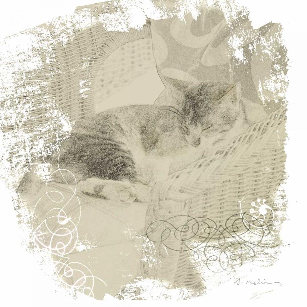 Feline Illustration I Melious, Amy 144903