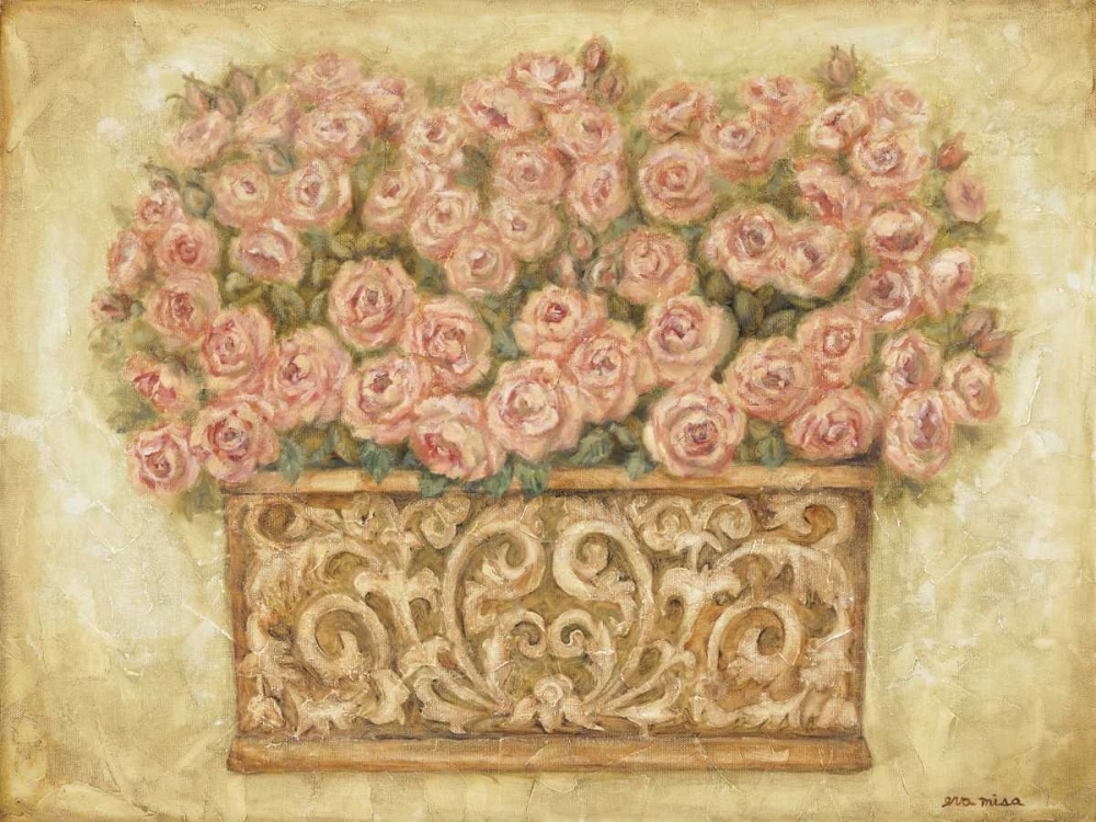 Pink Roses Misa, Eva 6153