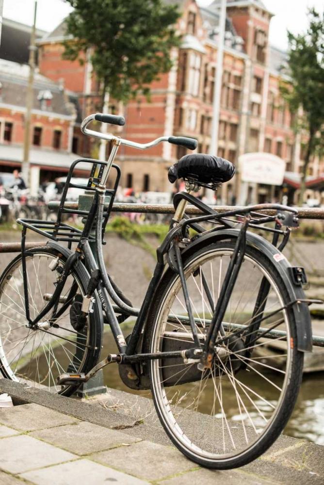 Dutch Bike Berzel, Erin 63905