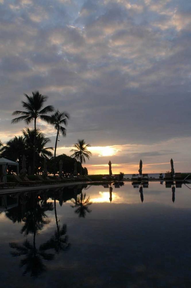 Tropical Paradise Berzel, Erin 66