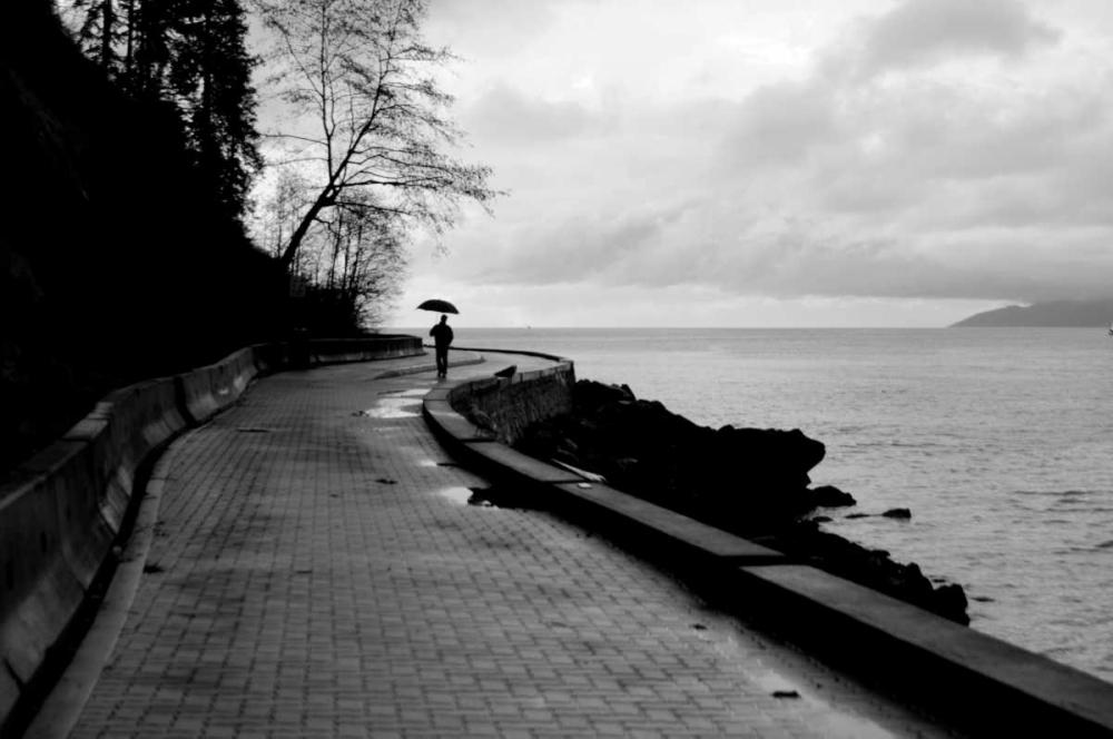Walking in the Rain Berzel, Erin 1080