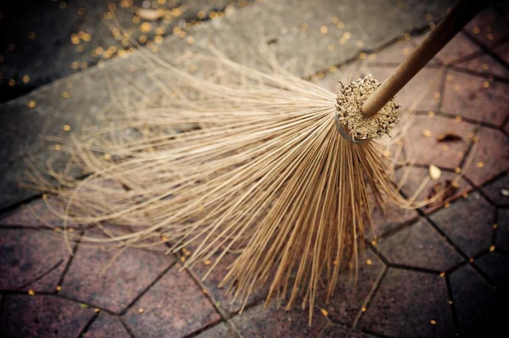 Thai Broom I Berzel, Erin 14119