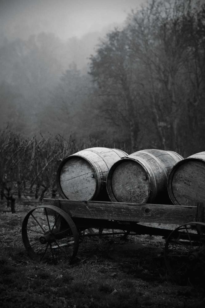 BW Oregon Wine Country II Berzel, Erin 24650