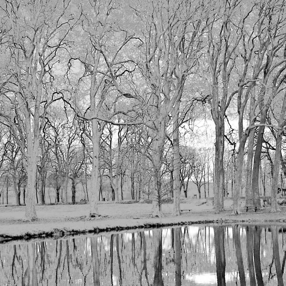 Along the Canal Crane, Rita 1499