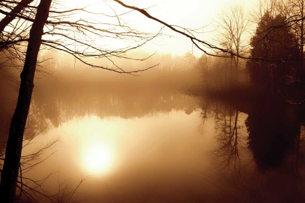 Fog on Shelly Lake II Hausenflock, Alan 716