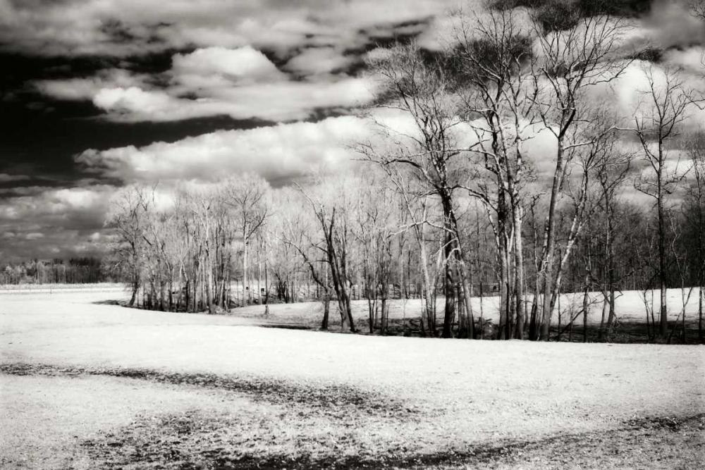 Hanover Winter I Hausenflock, Alan 9567