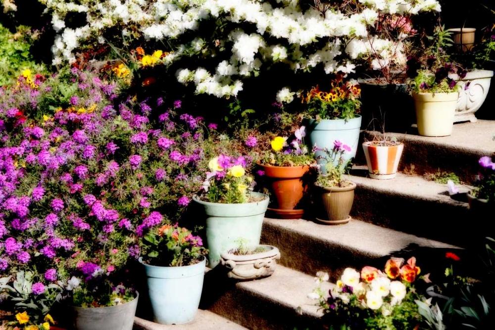 Sidewalk Spring II Hausenflock, Alan 9608