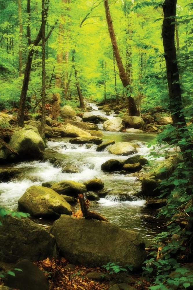 White Oak River I Hausenflock, Alan 783