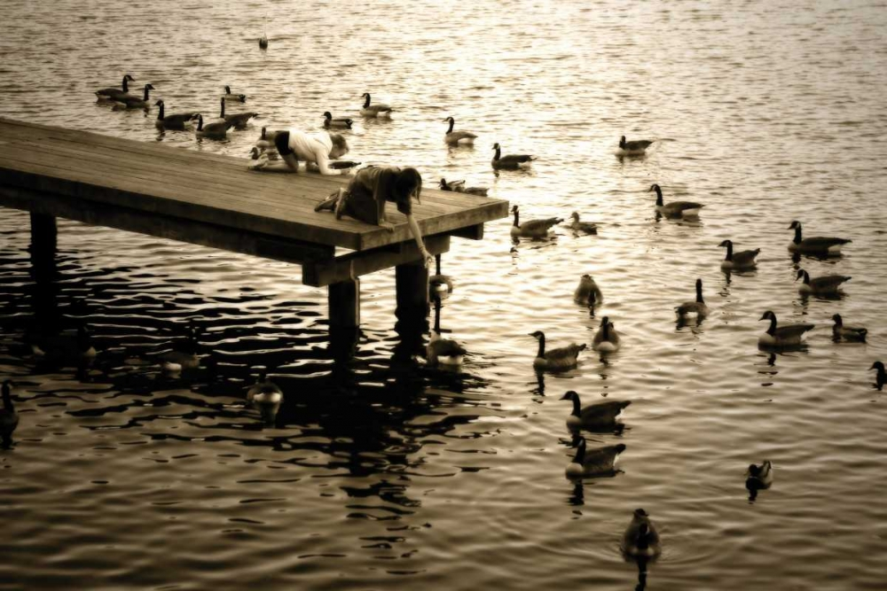 Feeding the Geese II Hausenflock, Alan 794
