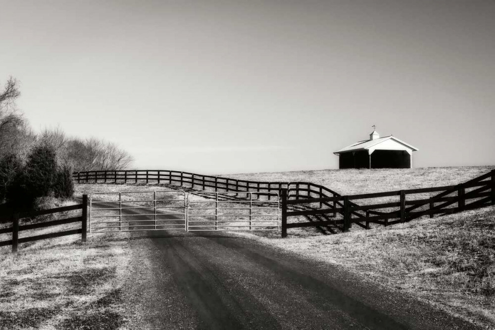 Albermarle Farm II Hausenflock, Alan 19967