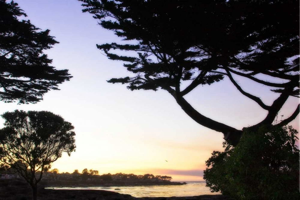 Sunset on Pacific Grove Hausenflock, Alan 807