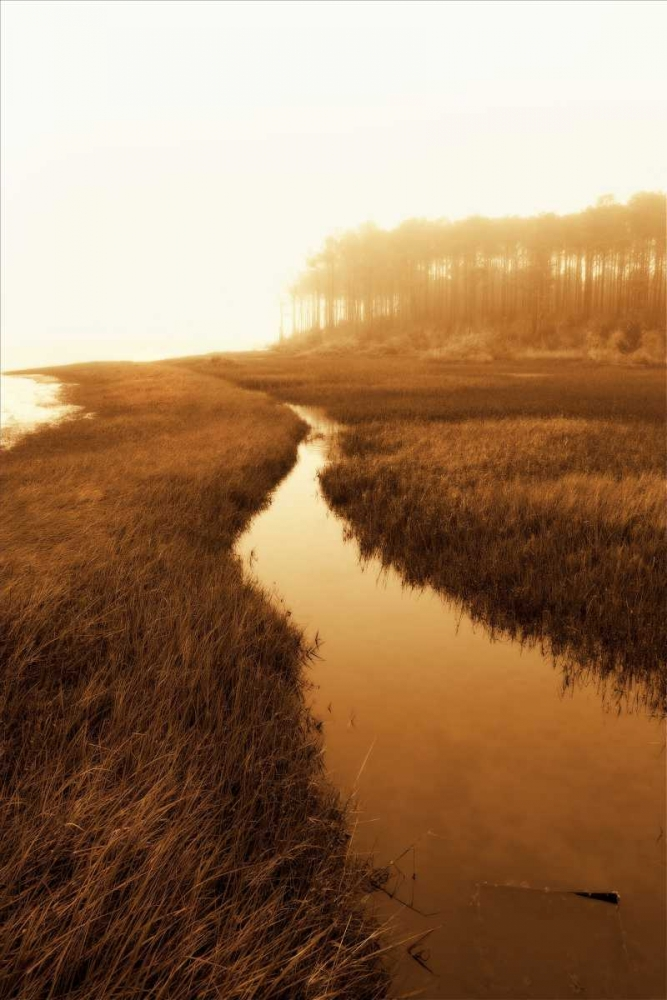 Harkers Island Marsh I Hausenflock, Alan 827