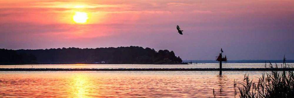 Potomac Sunset II Hausenflock, Alan 145563