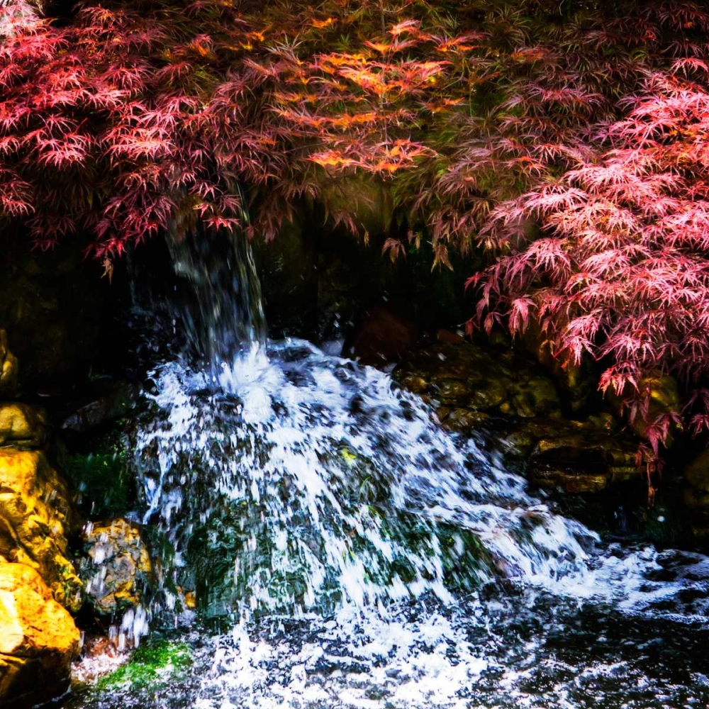 Gentle Waterfall I Hausenflock, Alan 145608