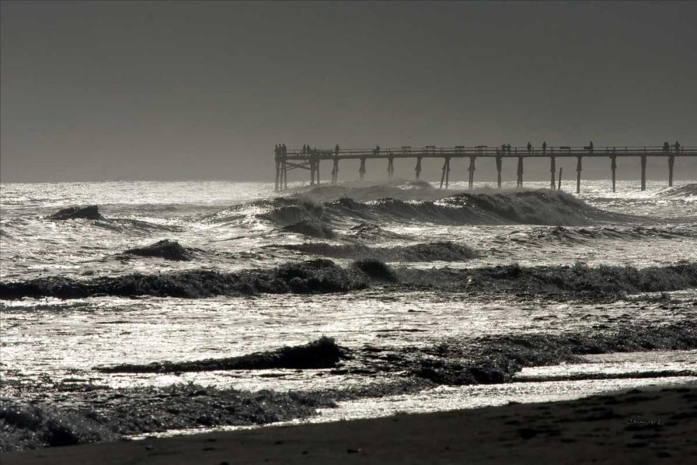 Silver Sea I Hausenflock, Alan 879
