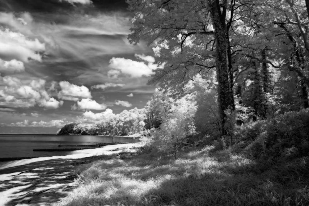 Tappahannock Shores II Hausenflock, Alan 145668