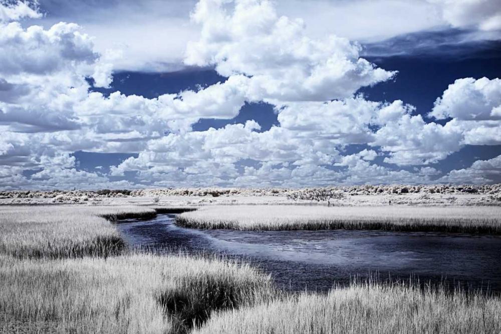 River in the Marsh I Hausenflock, Alan 145673