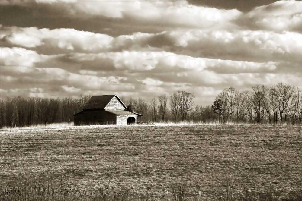 Cloudy Skies II Hausenflock, Alan 1845