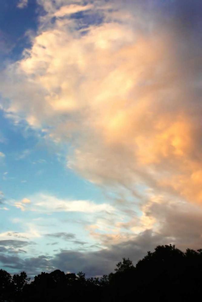 Rainbow Cloud II Hausenflock, Alan 921