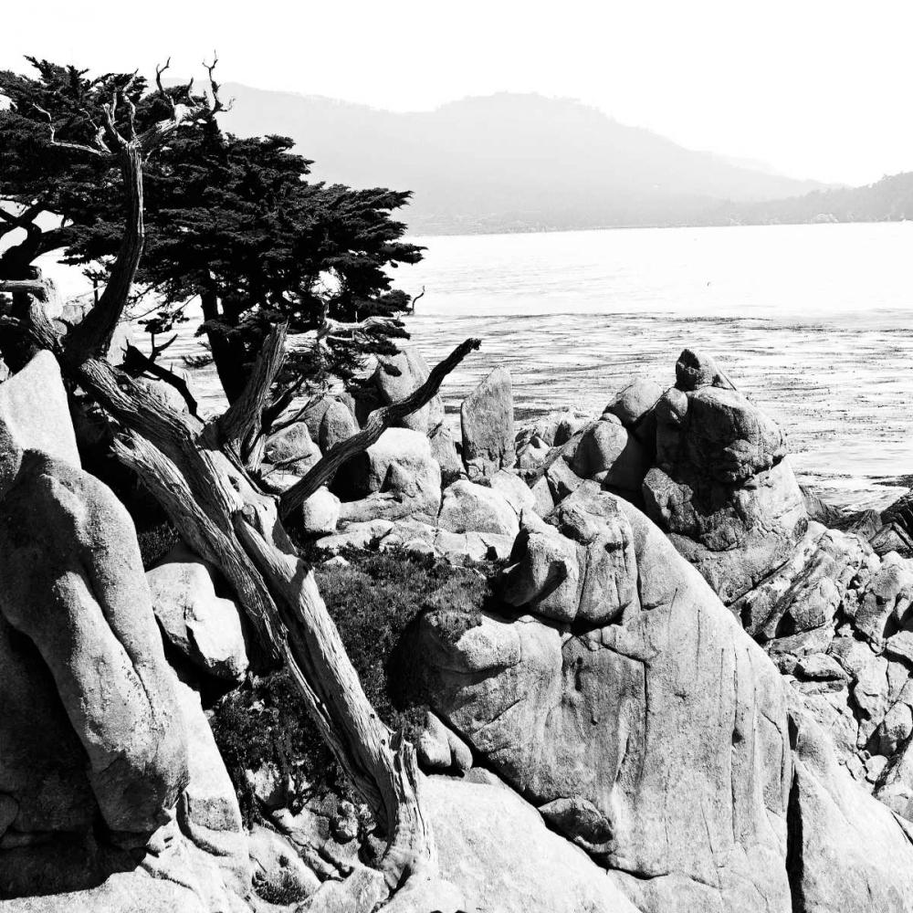 Ocean Cliff Square II Hausenflock, Alan 262