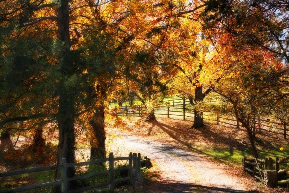Autumn on Kent Farm I Hausenflock, Alan 2020