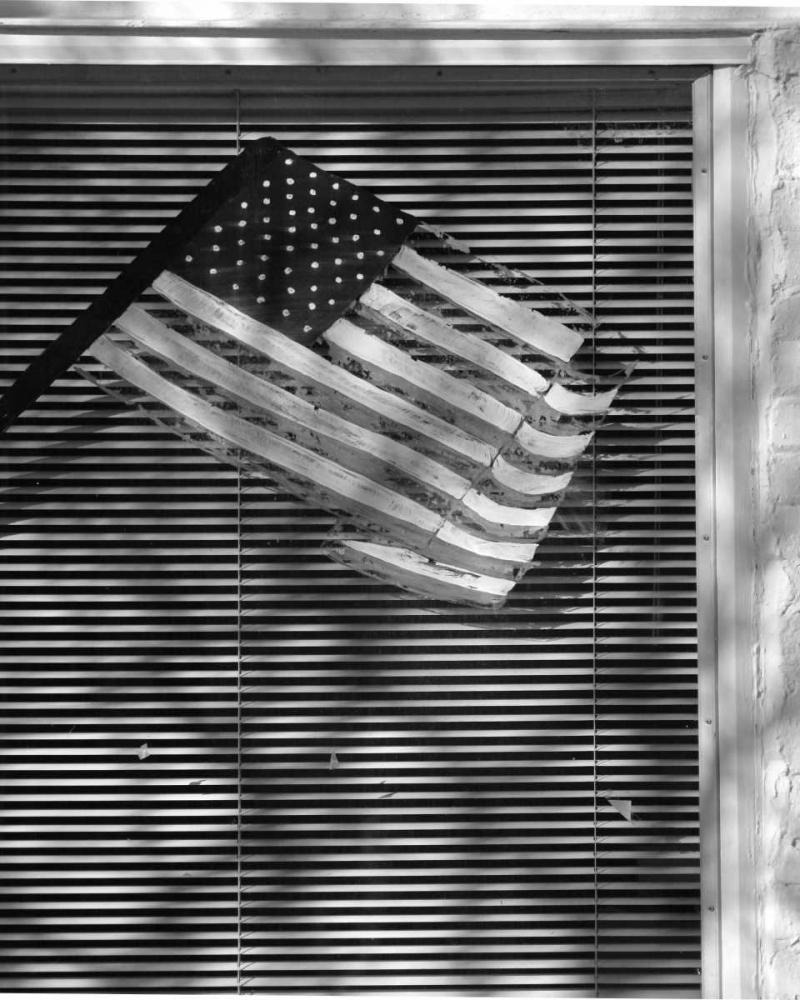 Window Flag II Larson, Scott 2137